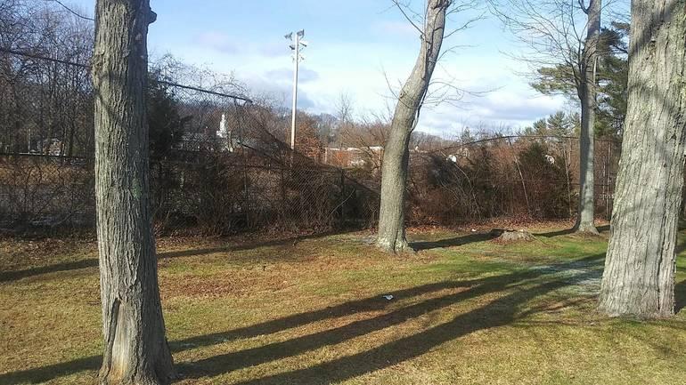 Roxbury, NJ, Succasunna, Roxbury Schools, tennis