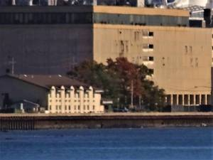 Carousel image b55b60b3f6438cc178d8 ferry1