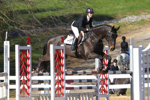 Carousel image 011b43918d5fd00c977b finemore eventing