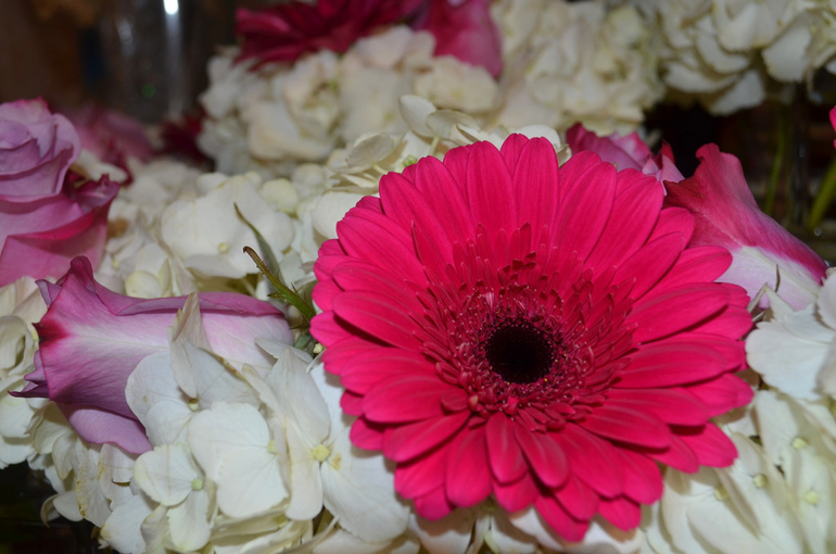 Flower arrangement at Apple Blossom Flower Shop in Scotch Plains