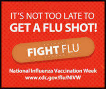 Top story 2280410171d2fa36c205 flu logo