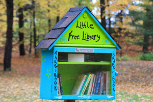Carousel image 0c4764db1dd25d054635 free little library