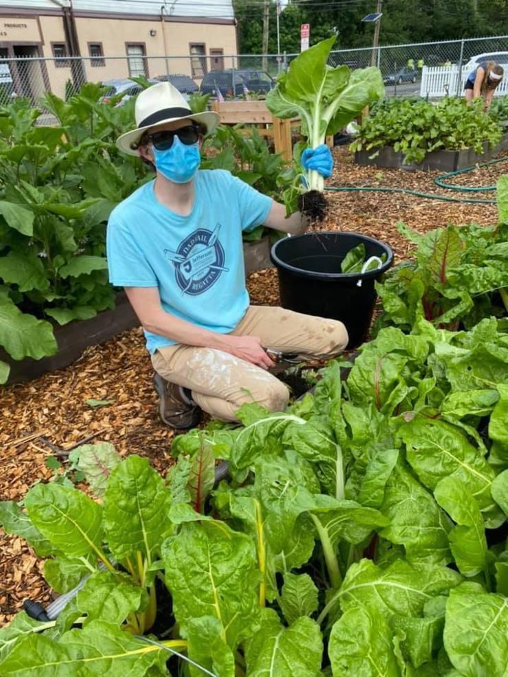 Roselle Park Environmental Commission Hosting Lottery for  Community to Rent Garden Plots