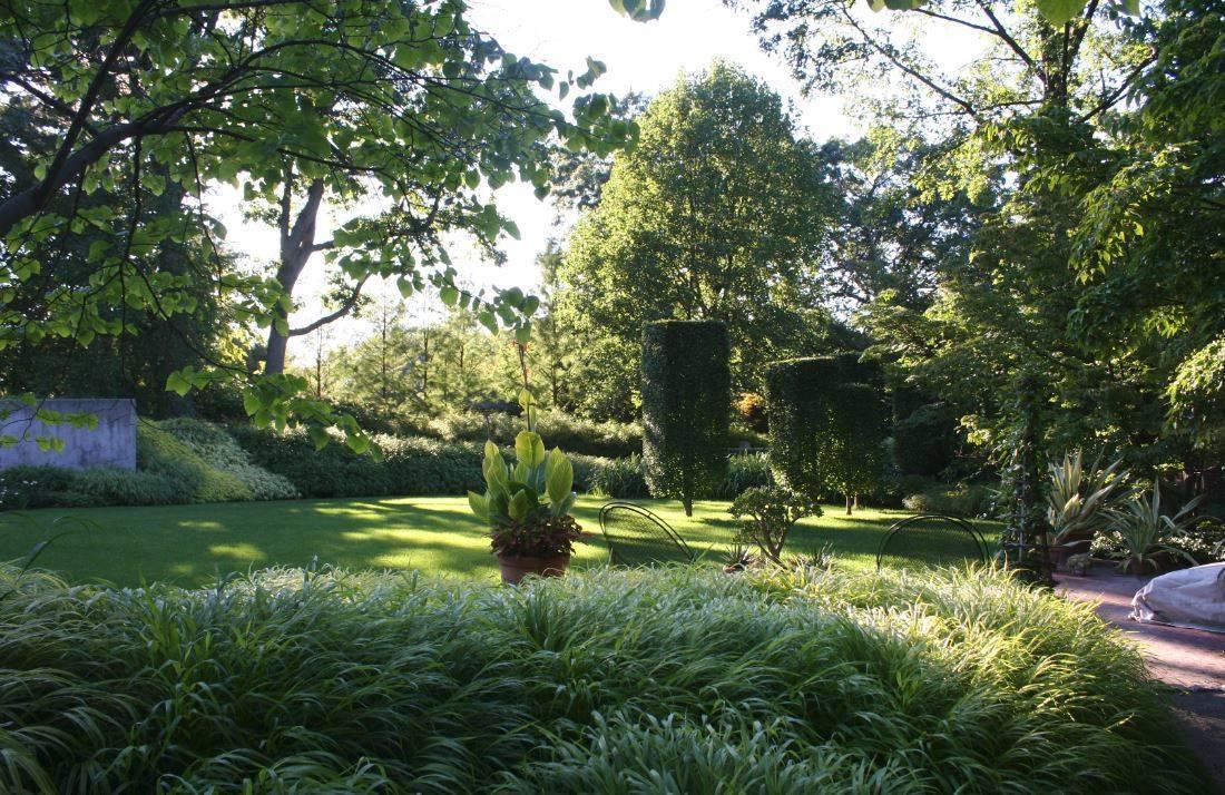 Garden NFSB d.JPG