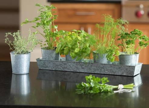 Top story 3147095939ff9374c3f4 galvanized herb planters photo courtesy of gardeners supply company 2