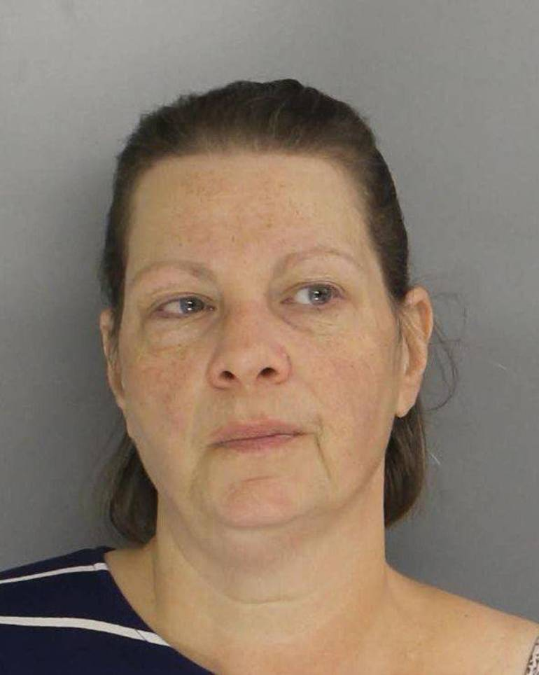Gottlieb, Ellyn Haverford Township woman charged with murder.jpg