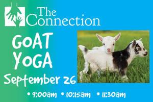 Carousel image aee88c1bcc4560cbcc24 goat yoga workshop