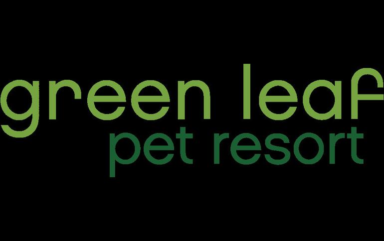 Green%20leaf.png