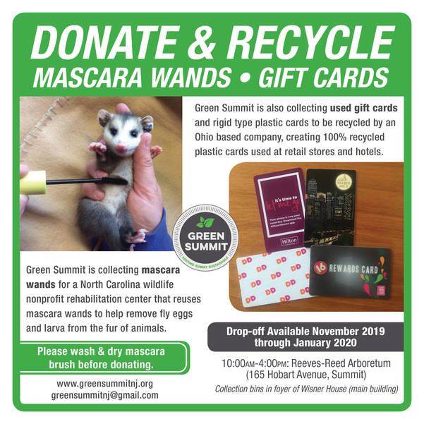 Green Summit-Gift Card-Wand Collection-Flyer-Square.jpg