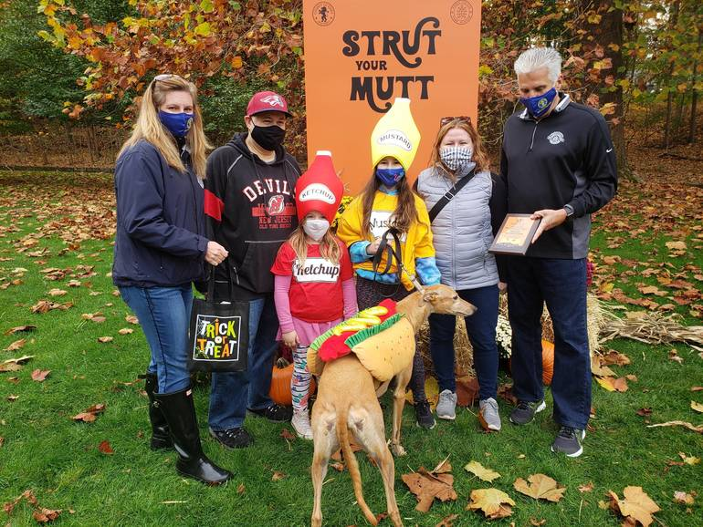 Livingston Dog and Owner Place Third in Essex County Halloween Costume Contest
