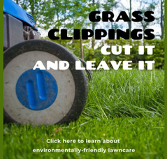 Parsippany Green Team Asks Residents to Clip it and Leave it