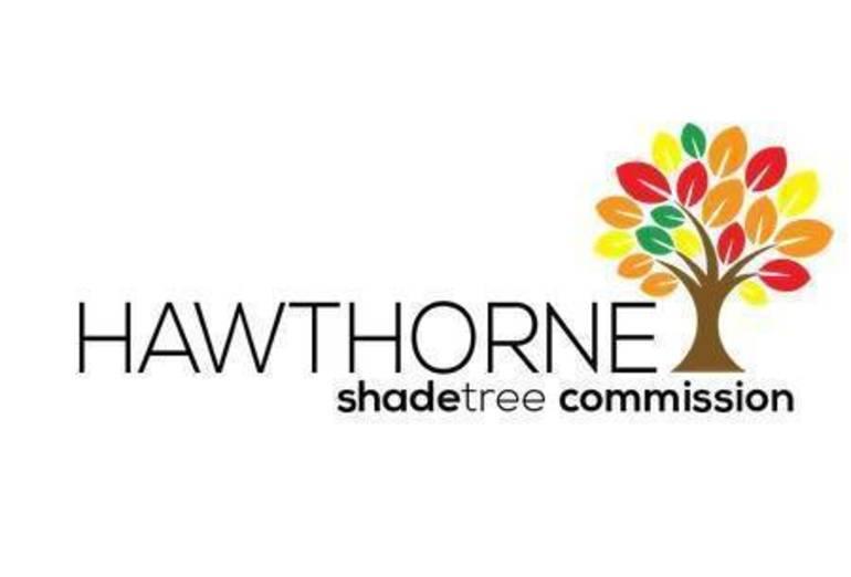 Hawthorne Shade Tree Commission Logo.jpg