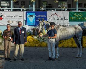 Carousel image 44085e318078604e1c20 hampton classic horse adoptiona