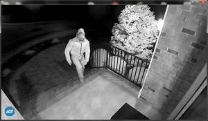 Carousel image 25dc14f03781f9f87766 hcpo suspect