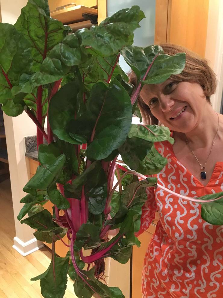Health and transformation coach - Waltraud Unger - holding Swiss Chard harvested from her Tower Garden.jpg