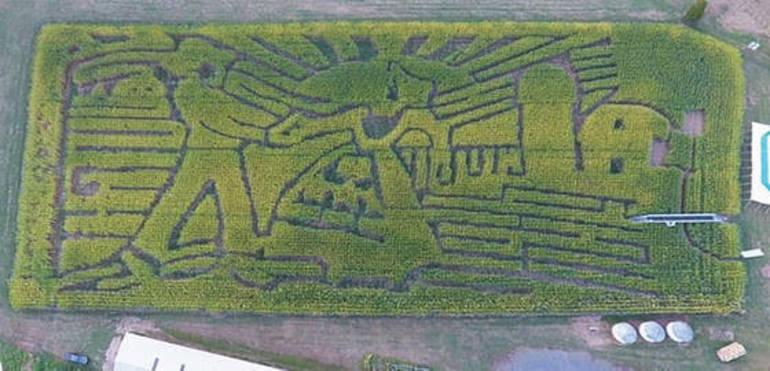 Howell Farm Faremer in the Dell Corn Maze.jpg