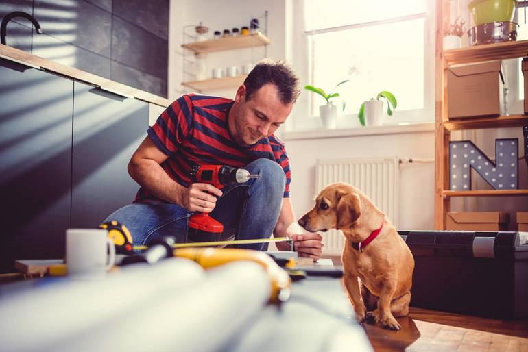 home renovation man dog kitchen.jpg