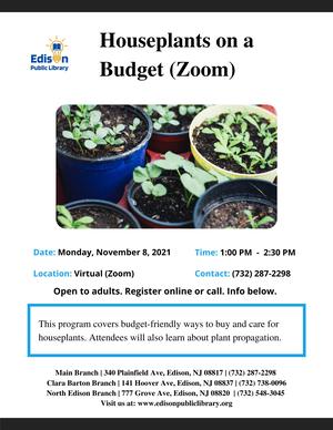 Edison Library Program: Houseplants on a Budget