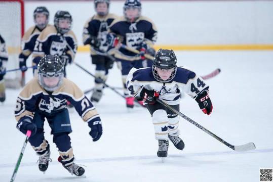 Top story f678608754e39d497887 hockey clinics