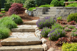 Beautiful Landscaping Without So Much Work? 6 Low-Maintenance Landscaping Ideas