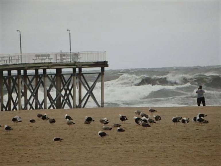 hurricanedorianspennrath.JPG