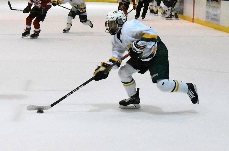Ice Hockey 03042020.03.JPG