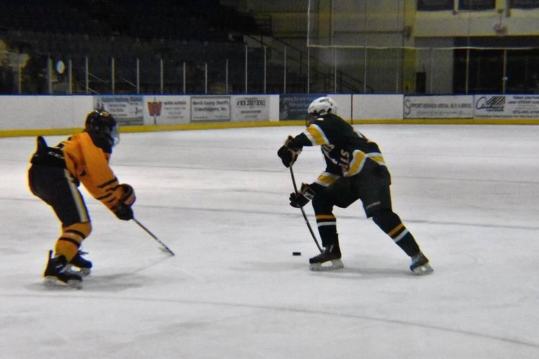 Ice Hockey 05.02132019.JPG