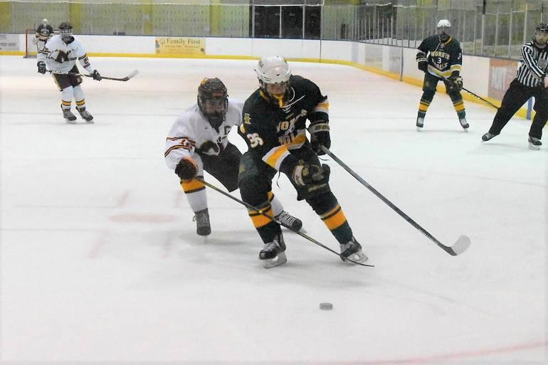 Ice Hockey  01032020.03.JPG