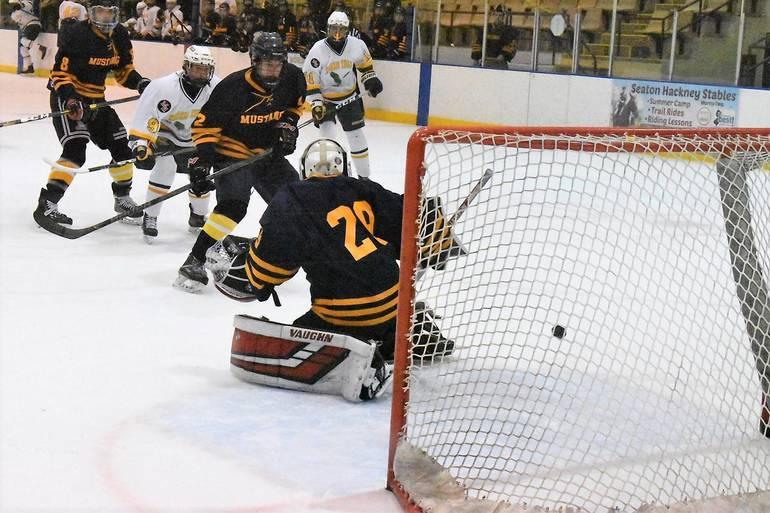Ice Hockey 03022020.04.JPG