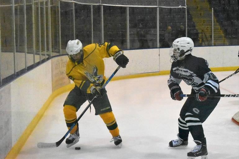 Ice Hockey 12102019.07.JPG