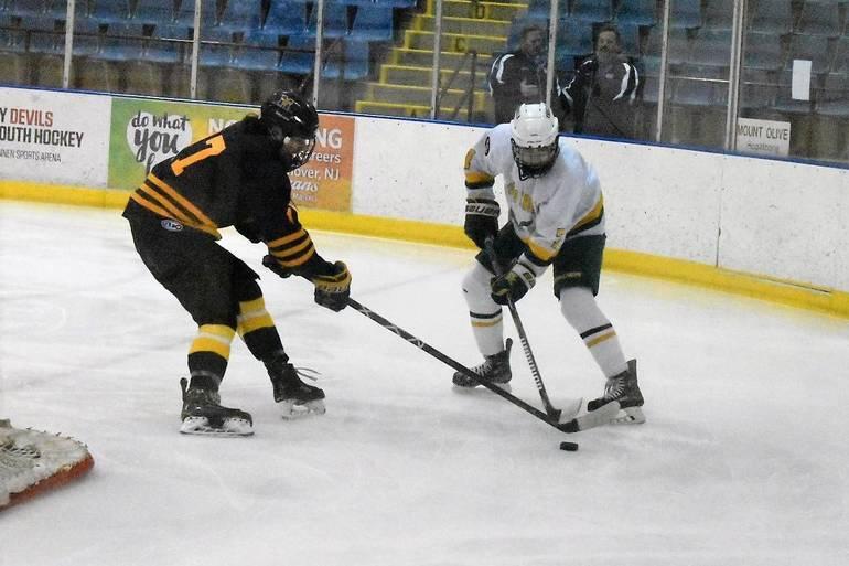 Ice Hockey 03022020.03.JPG