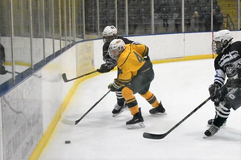 Ice Hockey 12102019.06.JPG