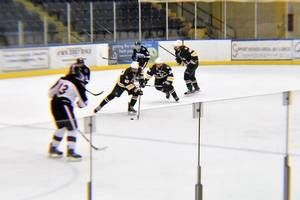 Carousel image 11332a699872ed2d8fa2 ice hockey 05.01142019