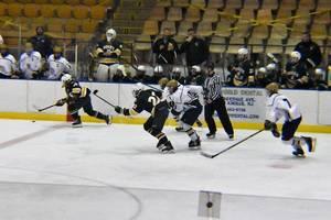 Carousel image 768e4687f1dad579e8e6 ice hockey 01.01122019