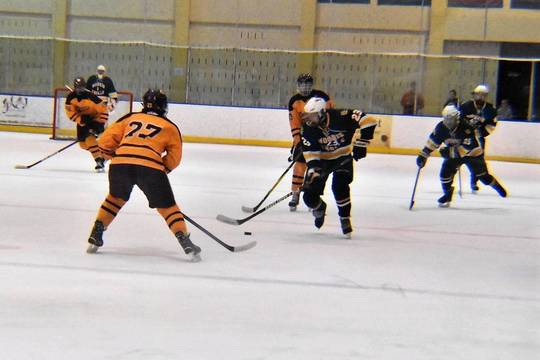 Top story babda4b9958bf0f0fbe6 ice hockey 01.02132019