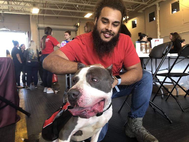 Rescue Animals Awaited Adoption At Coral Springs Police and Fire Event