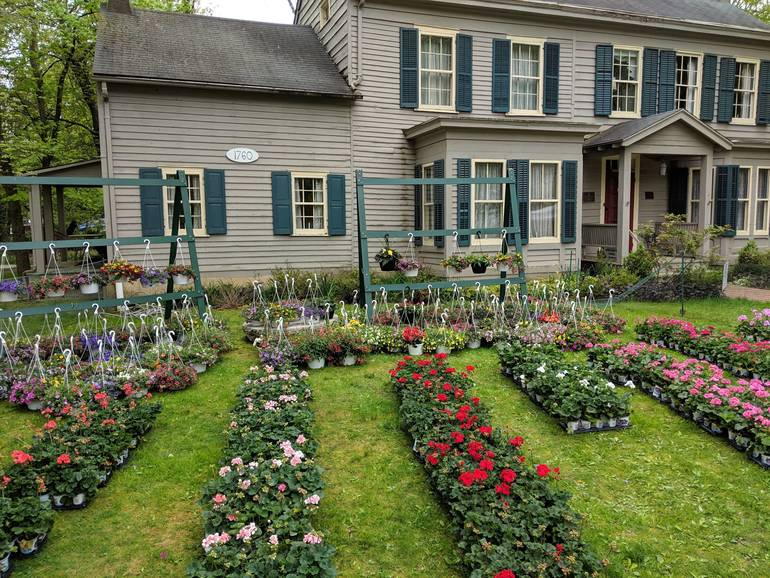 Mountainsidde Restoration Committee Spring Geranium and Plant Sale Set for April 29, 30 & May 1, 2