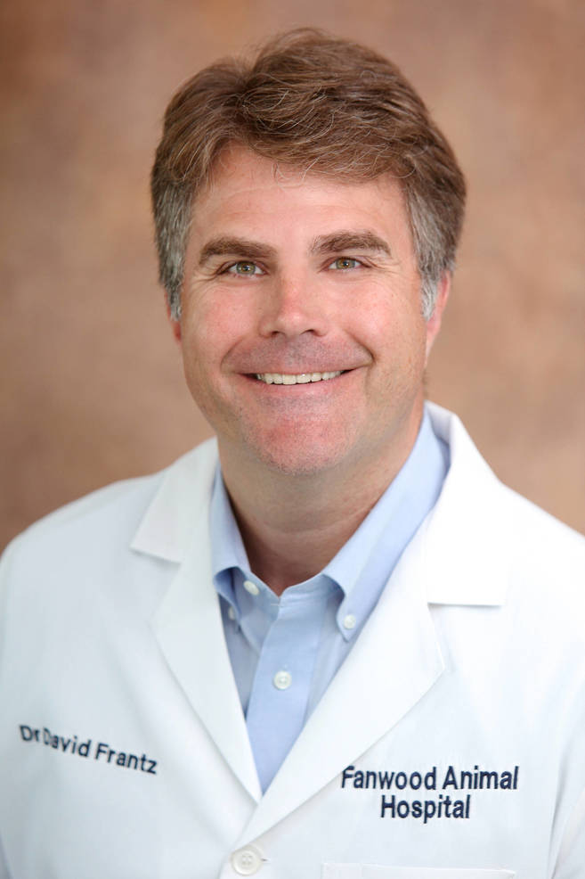 Dr. David Frantz of Fanwood Animal Hospital