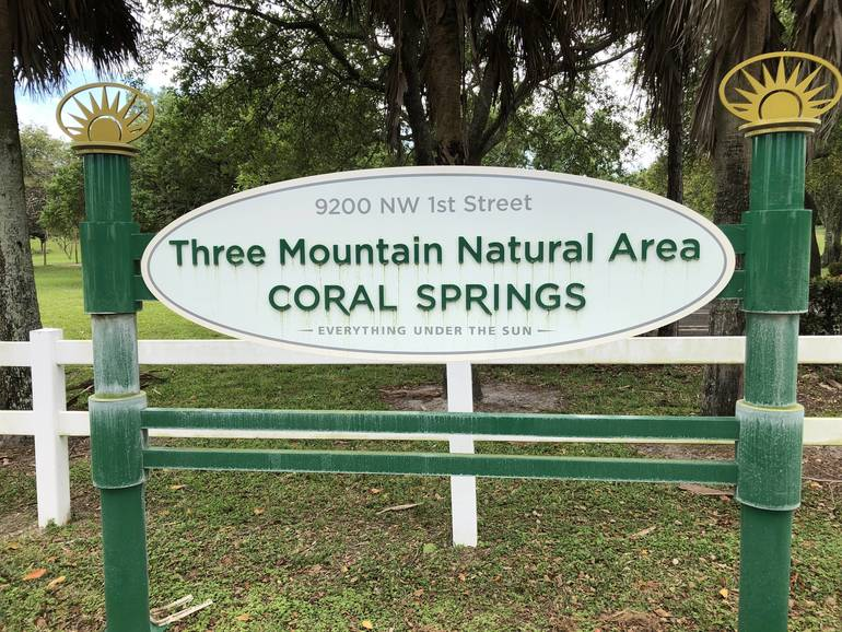 Coral Springs Trying to Catch Coyotes in City Park After Attack on Joggers