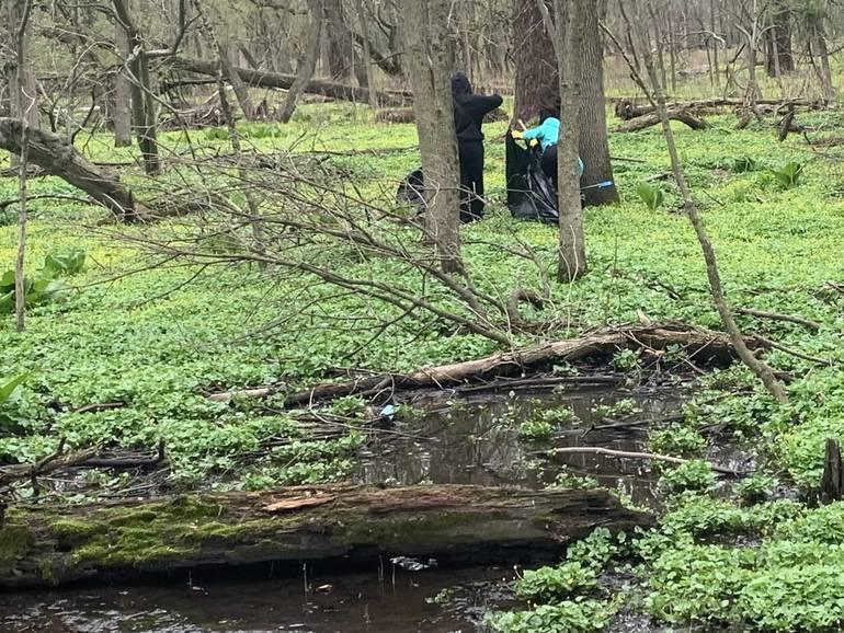Volunteers Help Keep Union's Waterways Clean