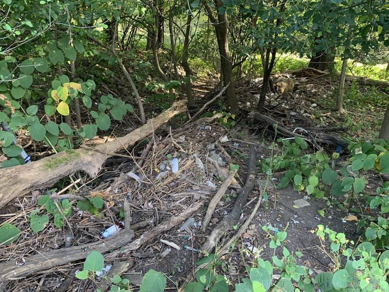 Rutgers Avenue Park Clean Up #2