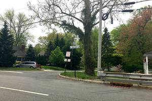 Summit Residents Press Council on Fernwood Road Closure, Leaf Blower Ban and Remote Meeting Access