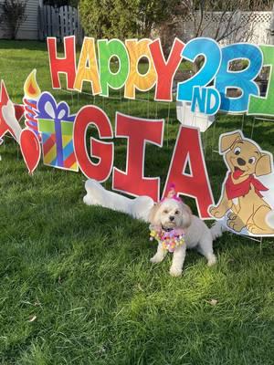 Scotch Plains Neighborhood Celebrates Gia the Dog's Birthday