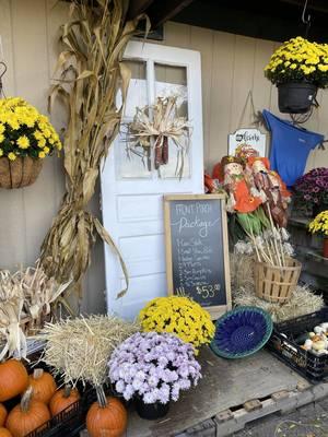 Autumn Discounts at Sparta Nursery and Garden Center