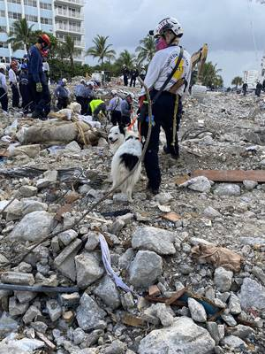 Hope helped this Franklin Firefighter dig through the rubble of a devastating condo collapse in Miami