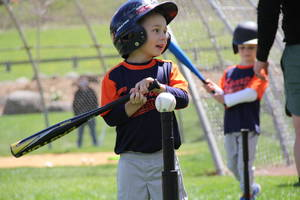Sparta Little League Baseball All-Stars Go Undefeated in District Play, Moving to Sectionals