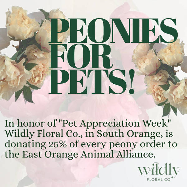 East Orange Animal Alliance Peonies for Pets Fundraiser with Wildly Floral Co.