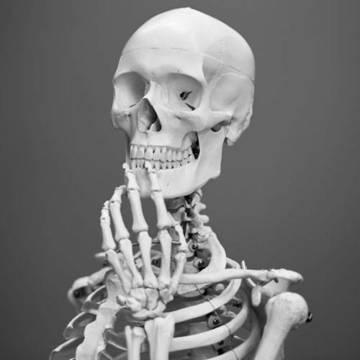 Top story 394cc0778dd88278f32f indecisive skeleton500