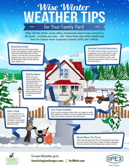 Top story 685cf9e09abca91724d9 infographic wise winter weather tips final updated