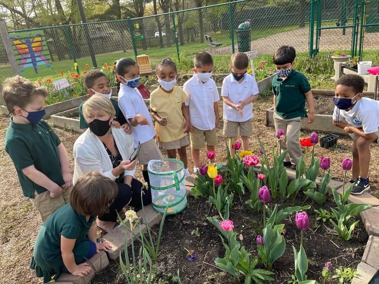 Wardlaw+Hartridge Students Release Butterflies in Garden
